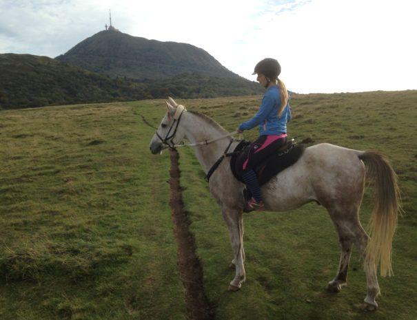 cheval_puy_de_dome_gite