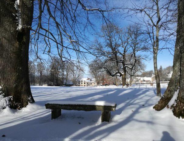 propriété sous la neige