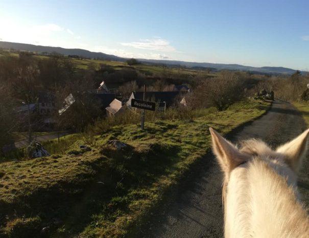 recoleine_cheval_promenade
